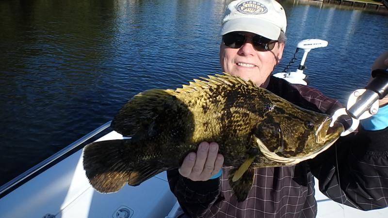 Palm beach jupiter inshore fishing report florida for Jupiter fishing report