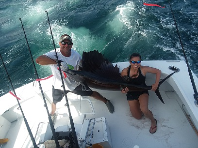 Sailfish Darrin s.jpg
