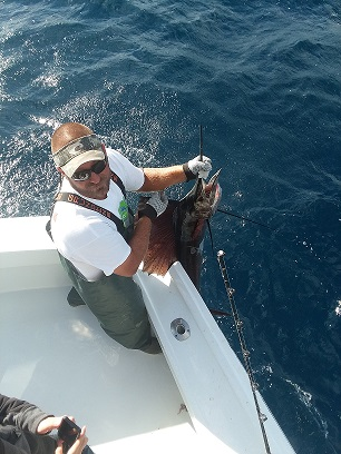 Sailfish Felipe s.jpg