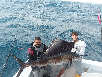 Sailfish Randy s.jpg